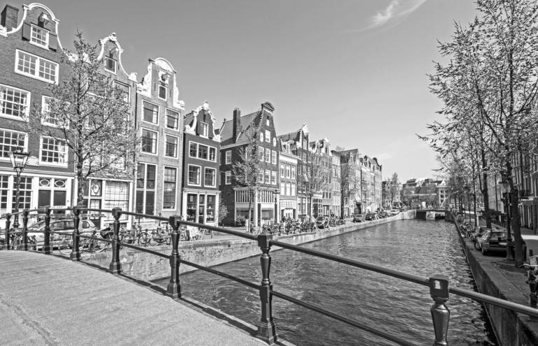 Progetto di riferimento FORMANI - Edward van Vliet