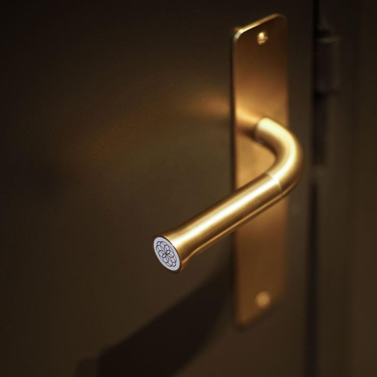 maniglia della porta su scudo oro satinato